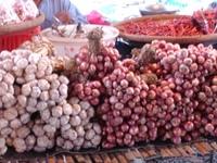 Market04_vegitables2